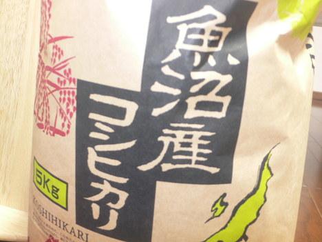 Uonumasan_koshihikari